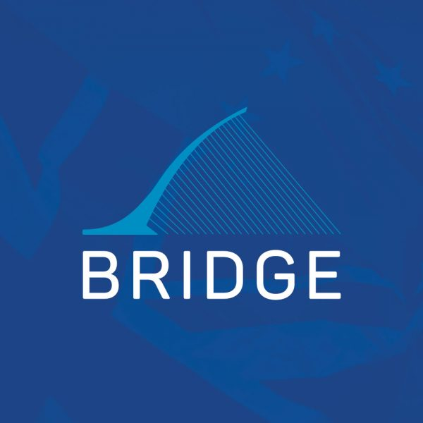 BRIDGE Network Website & Logo